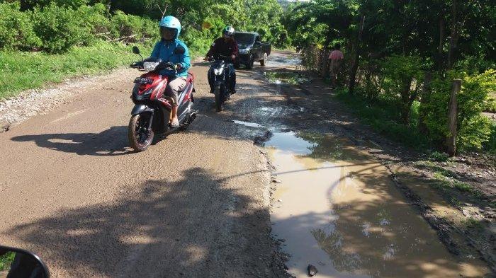 Perbaiki Kerusakan Jalan Provinsi di Malaka, Bupati Stef Tagih Janji Kampanye Gubernur NTT