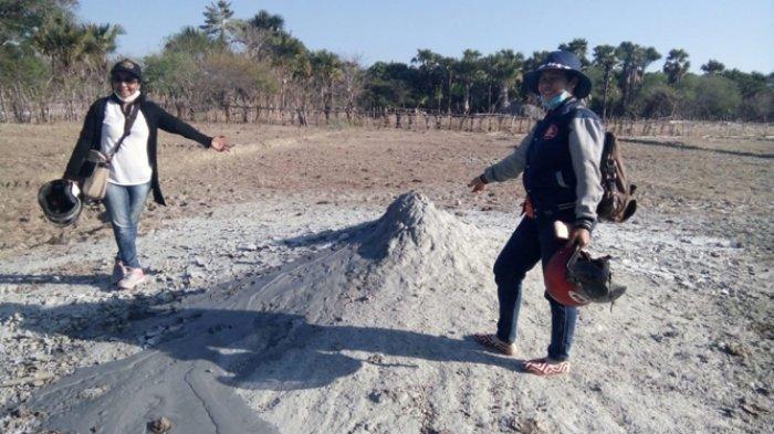 Semburan Lumpur Dingin di Semau Bisa Jadi Obyek Wisata Geologi