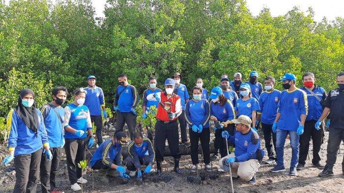 Tagana NTT TargetkanTanam 300 Anakan Mangrove
