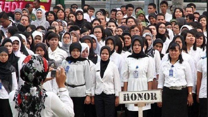 Nasib Tenaga Honorer Akan Ditentukan Tahun 2023, Jadi PNS atau Diberhentikan, Simak Info Lengkapnya!