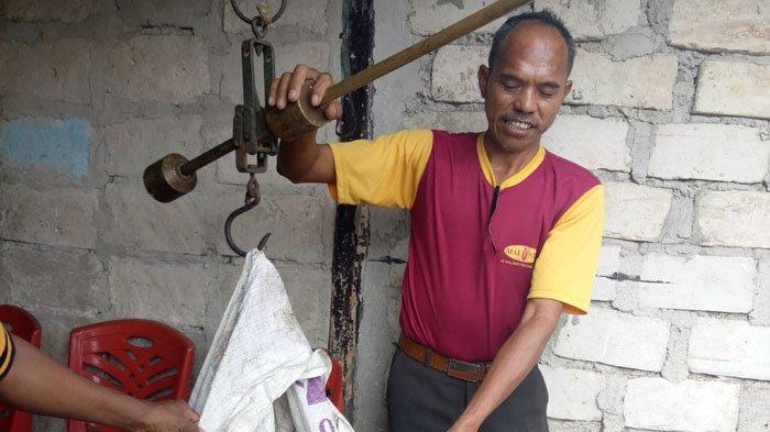 Guru Steven Lakukan Posyandu Babi di Sumba. Begini Kisah Suksesnya