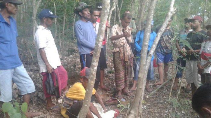 Suku Bikomi di TTU Gelar Ritual Adat Tolak Covid-19
