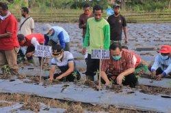 Bupati Belu, Agus Taolin Puji Petani Tomat di Desa Umaklaran