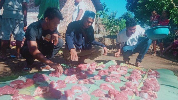 Toleransi di Masjid Al-Hidayah Nisa Nulan Adonara, Hewan Kurban untuk Umat Nasrani