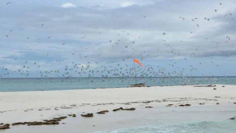 misteri-pulau-nuha-watan-peni-dan-uniknya-kolam-raksasa-di-wisata-pasir-timbul-meko-adonara.jpg