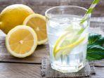 air-lemon-punya-5-manfaat-ajaib_20180111_125641.jpg