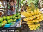 alpukat-dan-pisang-timor-kuasai-pasar-kota-kupang.jpg