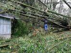 anggota-kodim-ngada-bantu-bersihkan-rumah-warga-yang-tertimpa-pohon-bambu.jpg