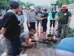 aswadin-anggota-satpol-pp-ende-nekat-masuk-dalam-drainase-saat-banjir.jpg