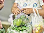 bahasa-jika-sayuran-disimpan-dalam-kantong-plastik.jpg