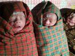 bayi-kembar-tiga-yang-lahir-di-rsud-prof-johannes-kupang.jpg