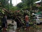 beberapa-pohon-tumbang-akibat-angin-kencang.jpg
