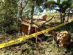 breaking-news-operator-chainsaw-di-ttu-meninggal-dunia-setelah-tertindih-pohon.jpg