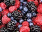buah-berry.jpg