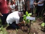 bupati-sikka-sedang-menanam-kakao-hibrida-f1.jpg