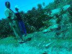 camat-amanuban-selatan-yohanes-asbanu-dan-kanit-reskrim-polsek-melihat-tkp_20180104_090949.jpg