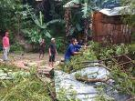 dalam-sehari-3-rumah-di-labuan-bajo-tertimpa-pohon-akibat-hujan-deras-dan-angin-kencang.jpg