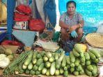 jelang-lebaran-harga-bawang-merah-di-pasar-oesapa-kupang-tembus-rp-35000-per-kg.jpg