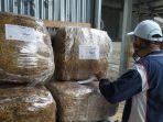 jerami-fermentasi-produksi-bbpp-kupang.jpg