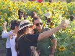 jiwan-garden-kupang-wisata-foto-kebun-bunga-matahari-pertama-di-ntt.jpg