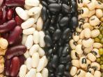 kacang-kacangan-mengandung-zat-tembaga.jpg