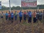 kopdit-swasti-sari-gelontorkan-rp-515-juta-untuk-petani-jagung-di-kodi.jpg