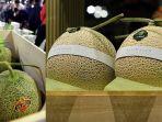 melon-jepang_20180528_071724.jpg