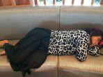 menteri-kelautan-dan-perikanan-susi-pudjiastuti-tidur-di-bandara_20170612_164150.jpg