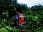 pohon-dan-tiang-listrik-di-desa-ngeranusa-tumbang.jpg