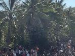 pria-adonara-ini-nekat-duduk-di-atas-pohon-kelapa.jpg