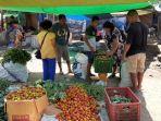 produk-hortikultura-dari-manggarai-dipasarkan-ke-labuan-bajo-manggarai-barat-ini-kata-lambertus.jpg