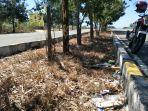 sampah-berserakan-di-area-patung-kuda-km.jpg