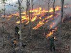 sigap-anggota-satgas-pamtas-yonif-132bs-bantu-padamkan-kebakaran-lahan-warga-malaka.jpg