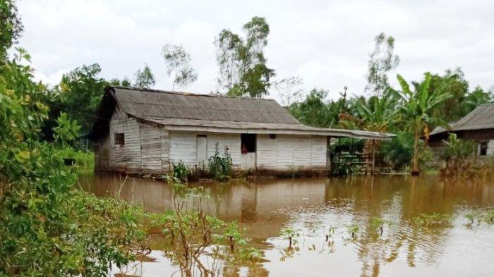 Diguyur Hujan Deras, 73 Rumah di Rawapitu Terendam Banjir