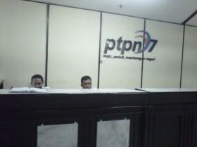 PTPN VII Punya Utang Segunung Rp 12 Triliun, Termasuk untuk Bayar Gaji Karyawan