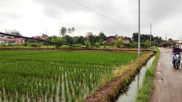Alsintan Bantu Petani Lampung Mengelola Hasil Panen