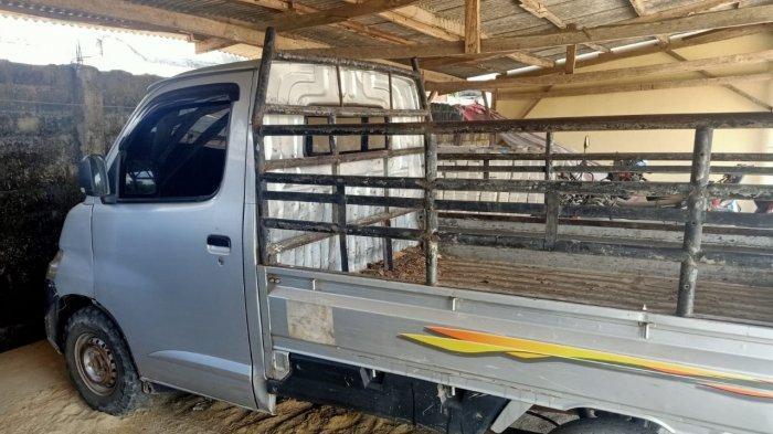 Angkut Sapi Curian Pakai Mobil, Warga Lampung Timur Diciduk Polisi