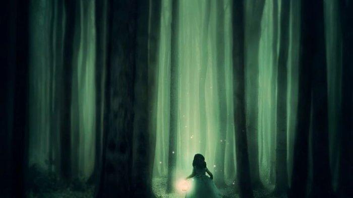 Arti Mimpi Berjalan di Hutan, Menjadi Pertanda Anda Khawatir tentang Satu Masalah