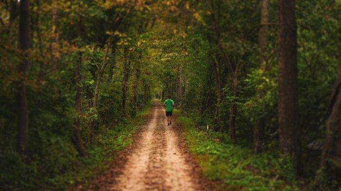 Arti Mimpi Dikejar Seseorang di Hutan, Pertanda Anda Memiliki Masalah dengan Orang Lain