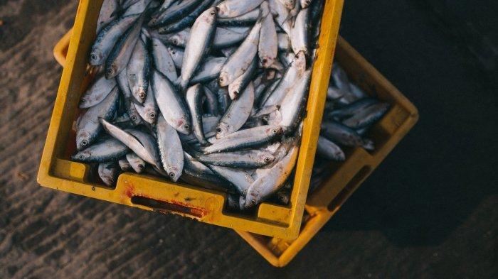 Arti Mimpi Makan Ikan Asin, Pertanda Buruk