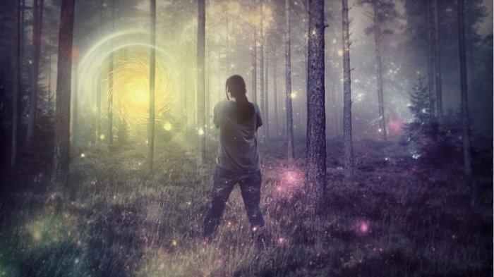 Arti Mimpi Tersesat di Hutan, Tanda Kehilangan Hal Penting dalam Hidup
