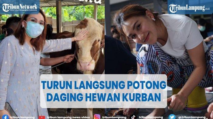 Pedangdut Ayu Ting Ting Bantu Potong Daging Hewan Kurban Saat Idul Adha 2021