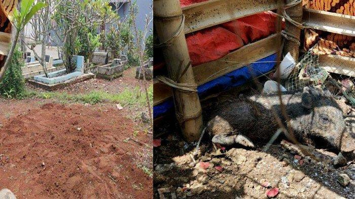 Kuburan Babi Ngepet di Depok Kini Akan Dibongkar Lagi, Warga Sempat Gelar Pengajian