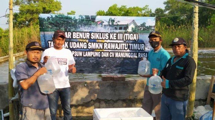 P3UW Lampung di Dipasena Rawajitu Berikan Bantuan 35 Ribu Benur ke SMK Negeri Rawajitu Timur