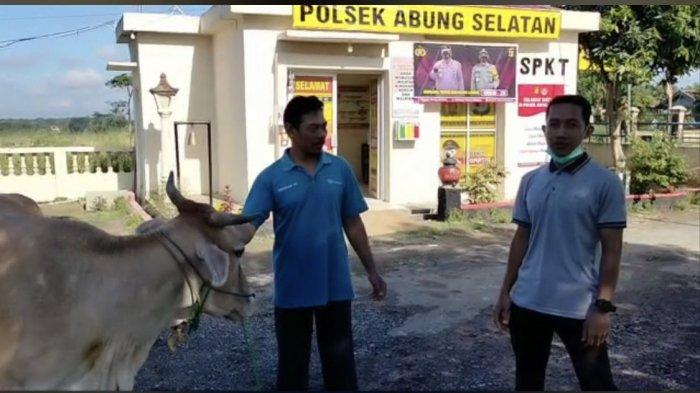 Polsek Abung Selatan Tangkap Pencuri Sapi Milik Warga Trimodadi