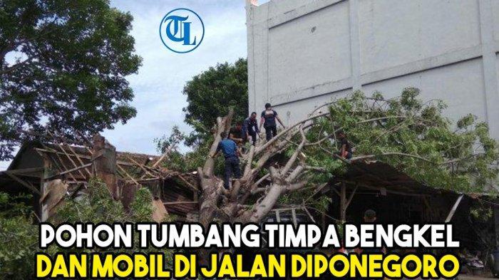Braakkkk, Pohon Tumbang Timpa Bengkel dan Mobil di Jalan Diponegoro