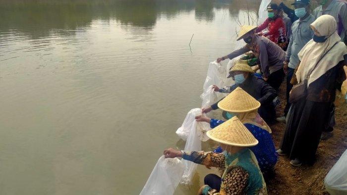 Bupati Umar Tebar Ribuan Benih Ikan Jelabat dan Baung di Way Kiri Tubaba
