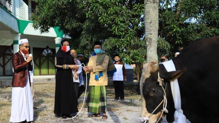 Bupati Winarti Serahkan 14 Hewan Kurban Hasil Sumbangan ASN Pemkab Tuba