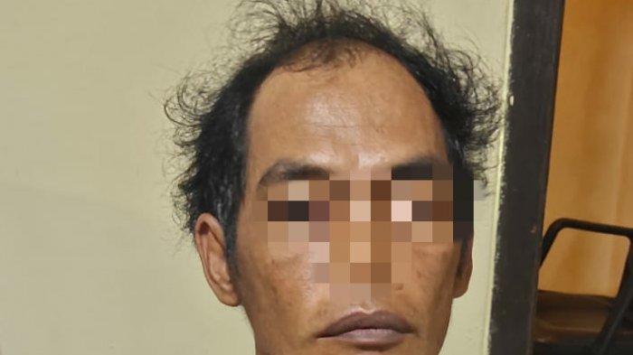 Buron 4 Tahun, Pencuri Sapi Diringkus Polsek Tanjung Bintang Lampung Selatan