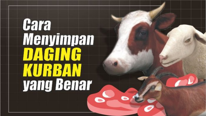 Tips Mudah Terhindar dari Daging Kurban yang Timbulkan Bau